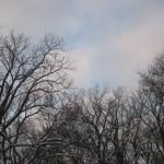 Winter sky, #3 © Ellen Wade Beals, 2012