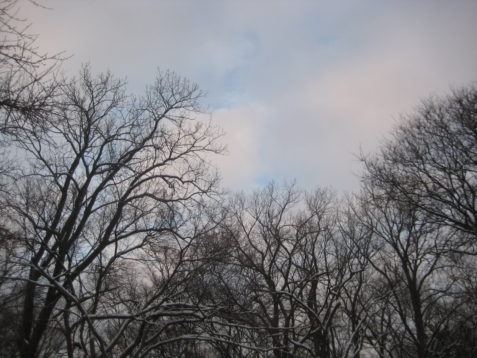 Sky in winter, #3