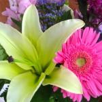 Flowery praise © Ellen Wade Beals, 2012