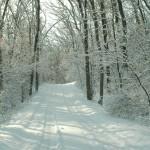Snow trail © Doug Stener, 2012