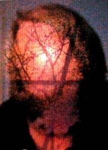 Treed © Ellen Wade Beals, 2014