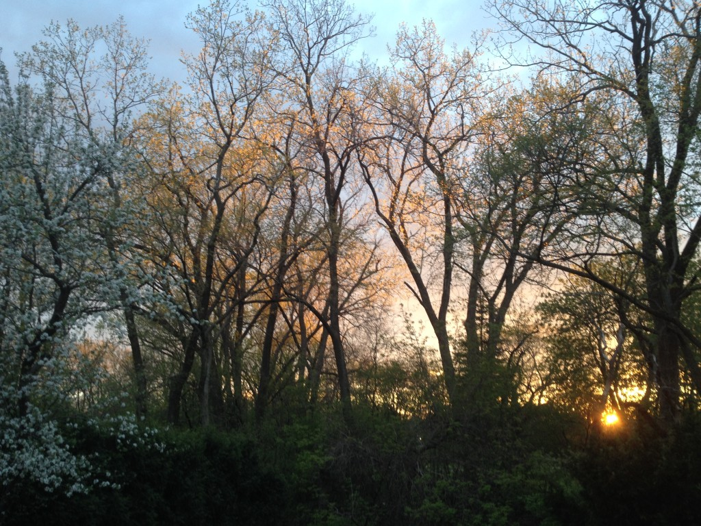 Sunset May 4, 2016, Part 1 © Ellen Wade Beals, 2016