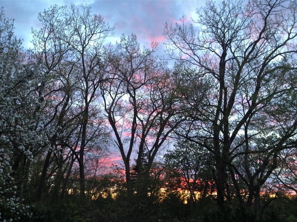 Sunset May 4, 2016, Part 2 © Ellen Wade Beals, 2016