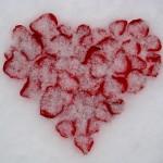 cold-heart-ellen-wade-beals-2012