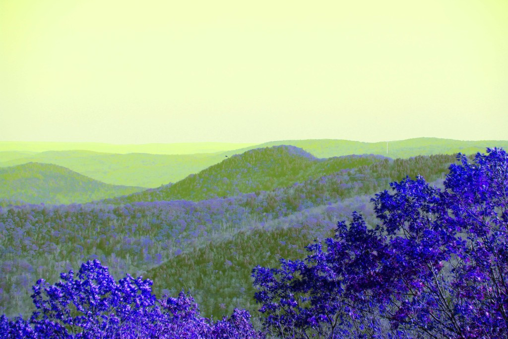 Purple mountains majesty  © Laura Rodley, 2016