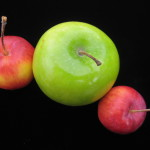 Apples to apples © Ellen Wade Beals, 2016