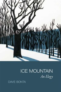 Ice-Mountain-book-cover