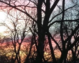 Winter sunset © Ellen Wade Beals, 2018